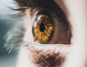 Visus oogkliniek